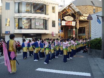 Yosakoi0_r
