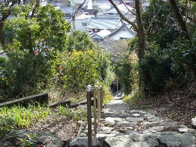 Yasuhinan3_r