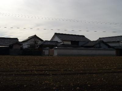 Yasuie1_r