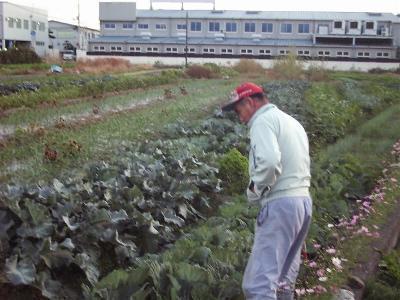 Inouemasao