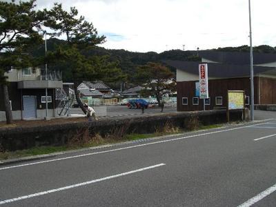 Shisupogorarumae_r