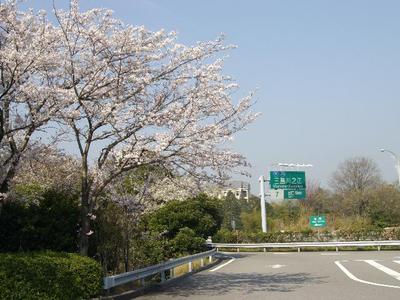 Kawanoepakamiwake_r