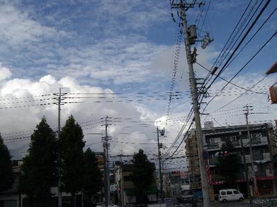 Natunokumo_r
