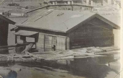 Shimozishinsui2