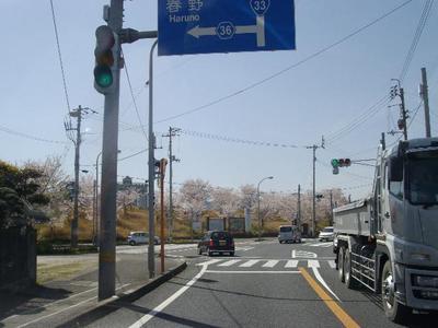 Inosakura_r