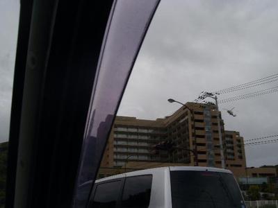 Iryousentarheri_r