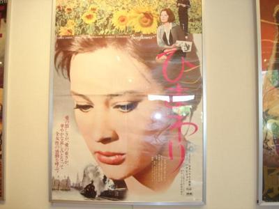 Himawari_r