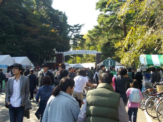 Hitotubashidaigakusaiomote_r