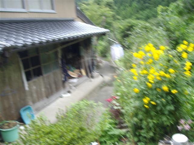 Kuroiwaie05_r