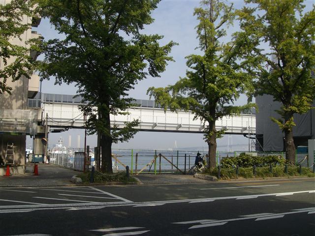 Yokohama003_r
