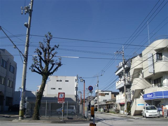 Aozora11160002_r