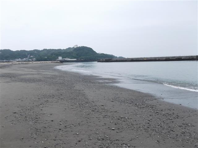 Yhamahigashi3_r